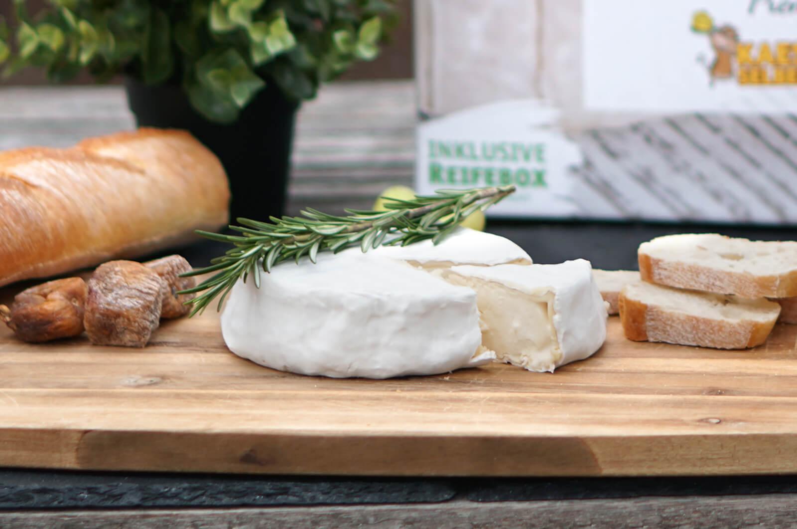 Käse selber machen - Weichkäse (Camembert)