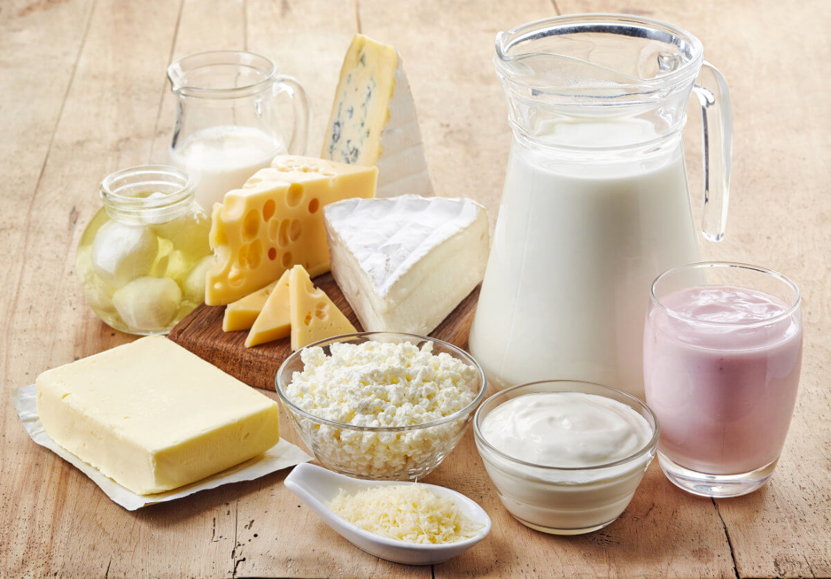 Die verschiedenen Milchprodukte
